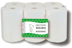 ECO-301*